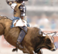 National Finals Rodeo tickets at TicketsNow