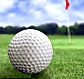 Colonial Golf Tournament tickets at TicketsNow