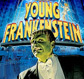 Click here for Young Frankenstein tickets.