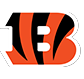 Cincinnati Bengals tickets from TicketsNow